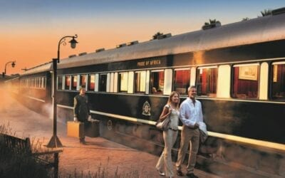 Cape to Dar es Salaam Rovos Rail Tour by Tales from Africa Travel