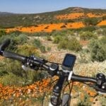 The Flowering Desert Cycle tour by Tales from Africa Travel