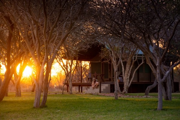 Rhino Conservation Experience Bush break by Tales from Africa Travel