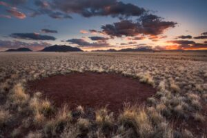 fairy-circle-close-up-Namibia-Tales-from-Africa-Travel-Where-fairies-dance-and-dragons-sleep-fairy-circle
