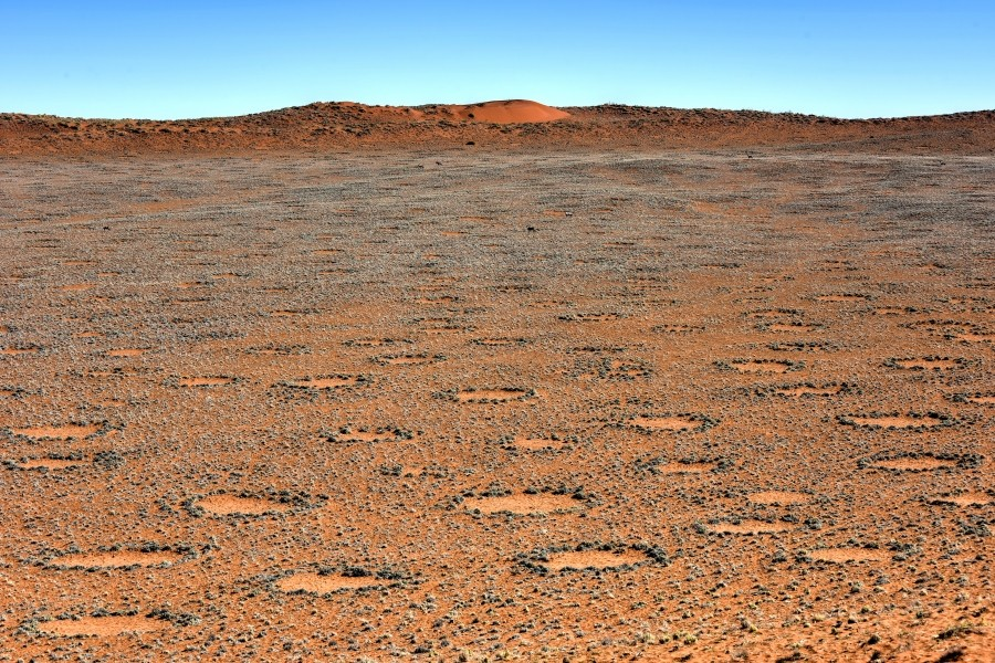 blog Tales-from-Africa-Travel Namibia where fairies dance and dragons sleep the mysterious circles in the Namib Desert